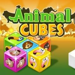 Jogo Animal Cubes