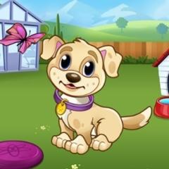Jogo Brinque Com o Cachorro