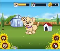 Brinque Com o Cachorro - screenshot 1