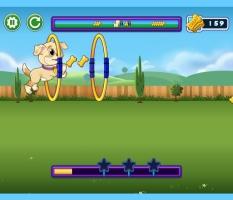 Brinque Com o Cachorro - screenshot 2