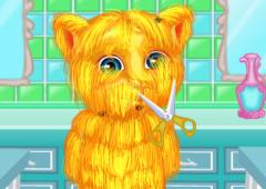 Corte o Pelo do Ginger