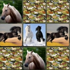 Jogo Jogo de Memória de Cavalos