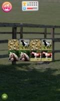 Jogo de Memória de Cavalos - screenshot 1
