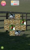 Jogo de Memória de Cavalos - screenshot 2