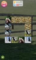 Jogo de Memória de Cavalos - screenshot 3