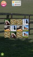 Jogo de Memória de Cavalos - screenshot 4