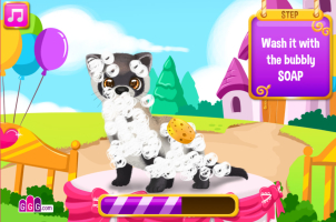 Pet Shop de Beleza 4 - screenshot 2