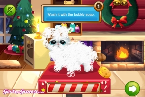 Pet Shop de Beleza no Natal - screenshot 1